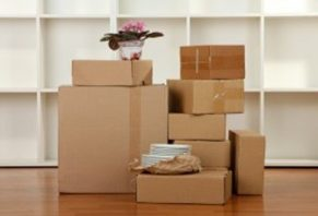 Removalists Brisbane to Gold Coast moving boxes